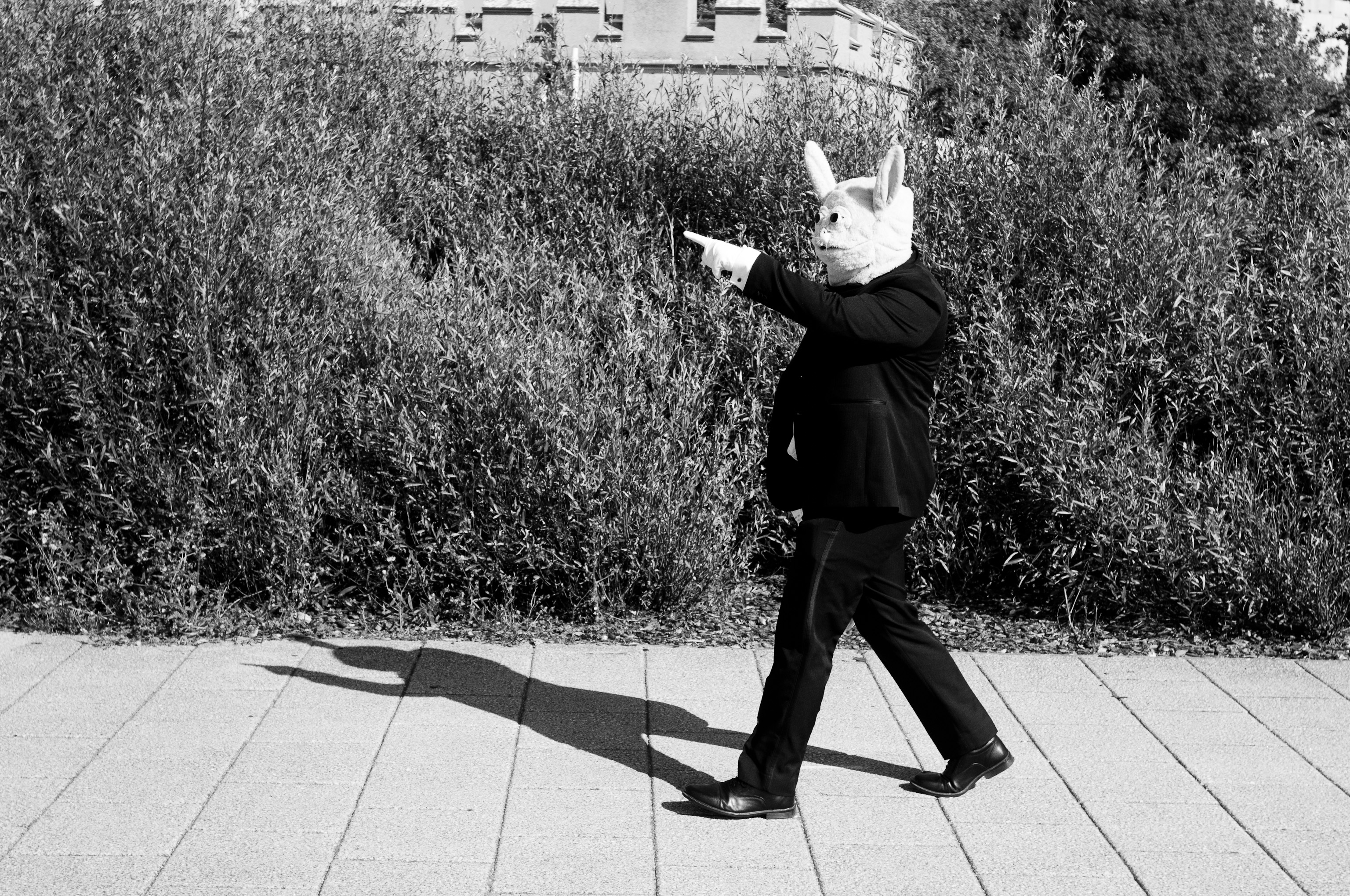 A person in a black dinner suit and wearing white gloves and a white rabbit mask points to the left of the picture. there are plants and part of a castle in the background.