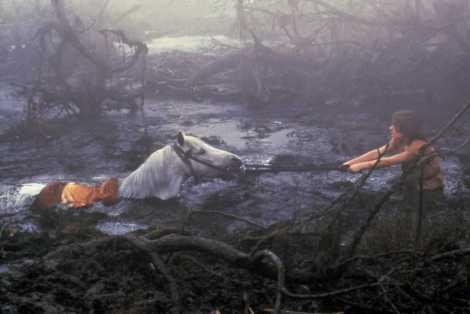 Artax drowning.