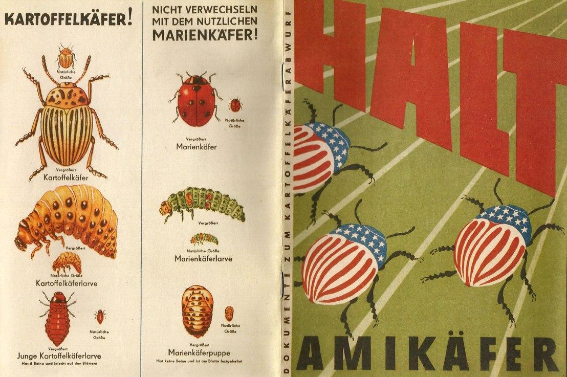Yank Beetles