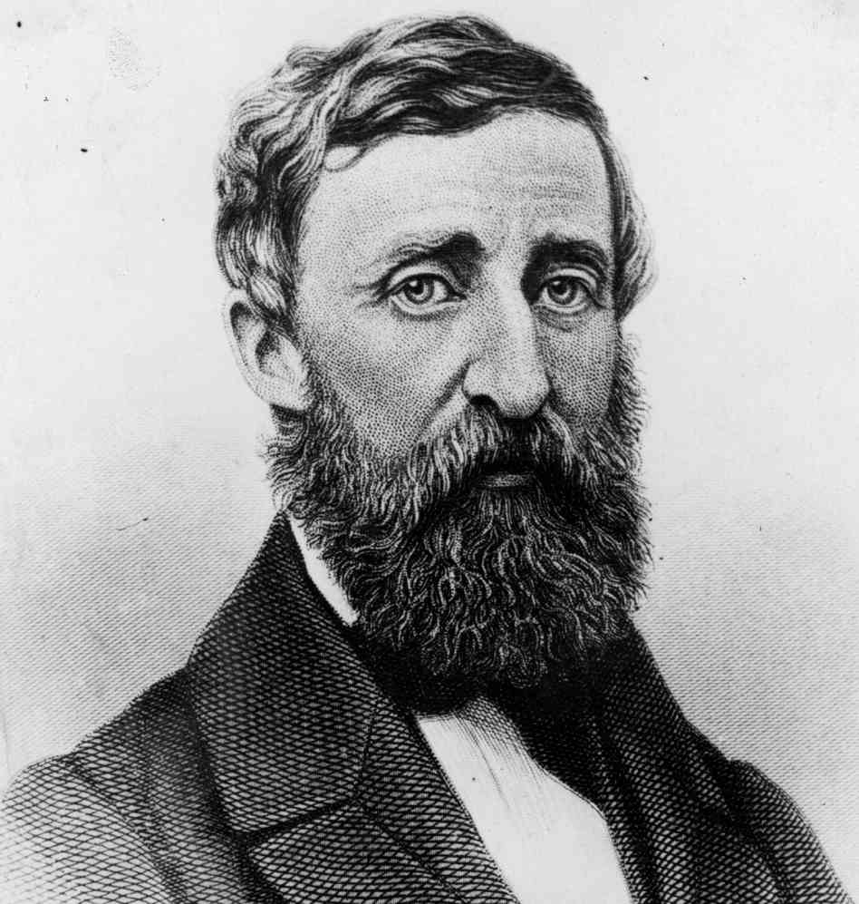 A monochrome engraving of the writer Henry David Thoreau. He is white man with his dark hair parted on one side. He has a heavy moustache and a long beard. He is wearing a coat with heavy lapels, a white shirt, and a bow tie or cravat.
