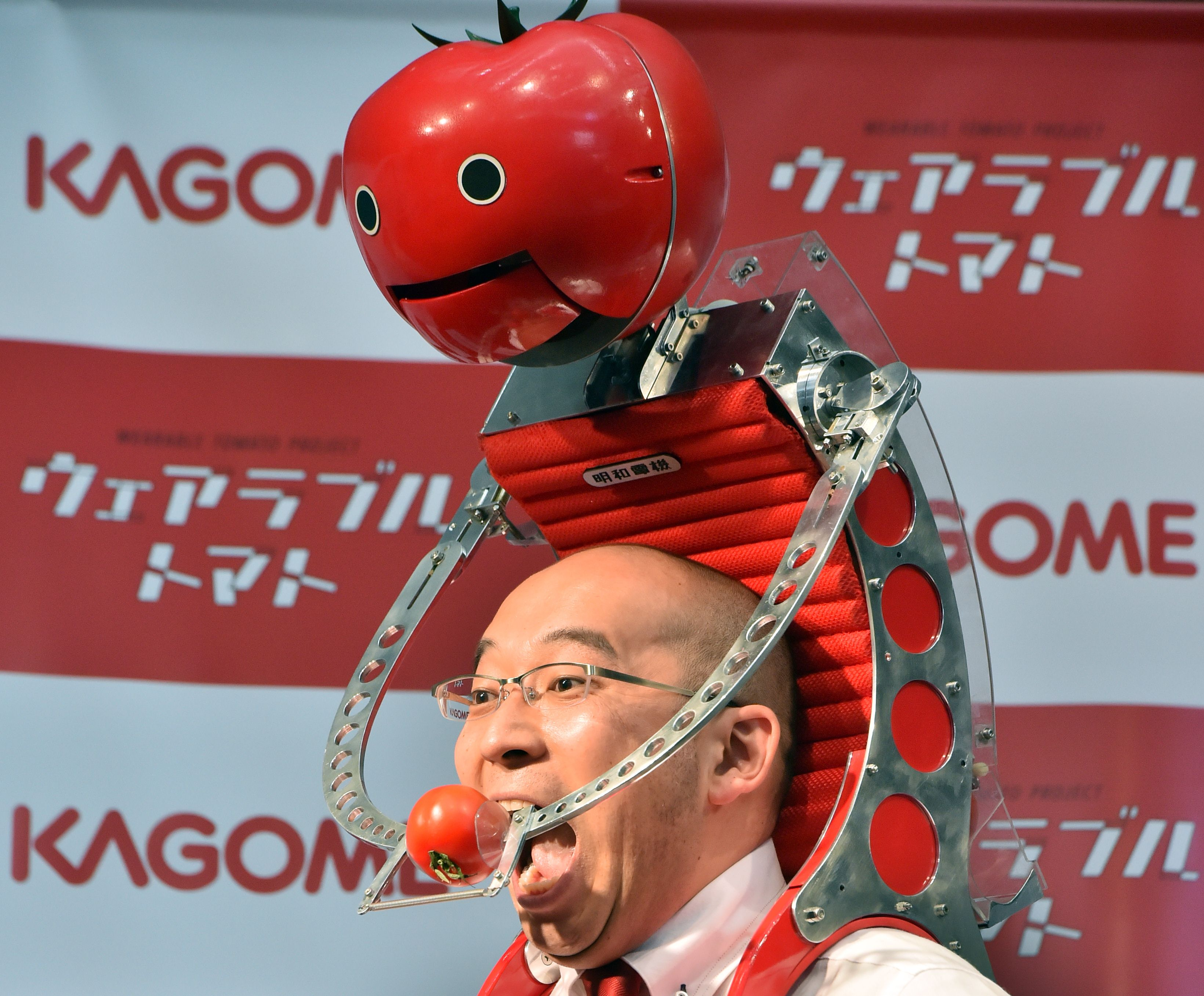 "Japan's food company Kagome employee Shigenori Suzuki tries to eat a tomato which is provided from the newly developed tomato dispenser for marathon runner ""Tomachan"" during a demonstration ahead of this weekend's Tokyo marathon in Tokyo on February 19, 2015. The hands free tomato eating machine was developed by Japanese artist Nobumichi Tosa and Tosa also developed a compact one ""Mini-Tomachan"".     AFP PHOTO / Yoshikazu TSUNO"