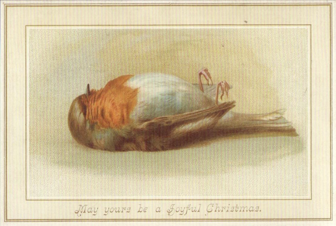 deadrobinchristmascard
